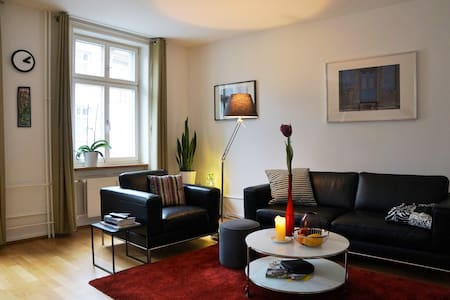 Cozy flat in old town ARTBASEL 2016 - Appartement