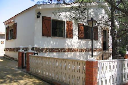 Villa am Berg  - Villa