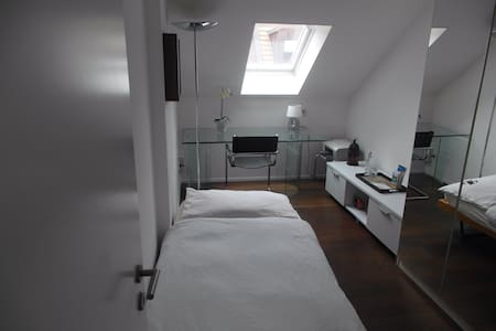 Private room in center of Zurich