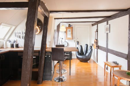 Charming apartment in the heart of Copenhagen - Copenhaga