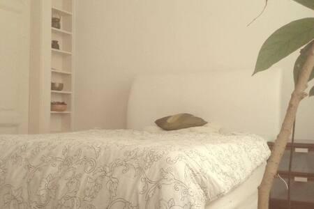 Beautiful room in the center - České Budějovice - Apartment