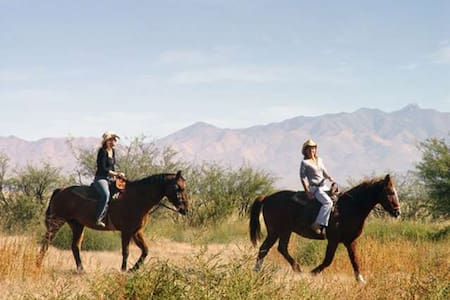 Glamping Farm Stay - Trail Riding!