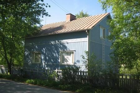 Big cottage near Mikkeli - Casa