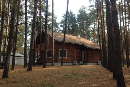 Загородный дом в лесной сказке - Воропаев - Hus
