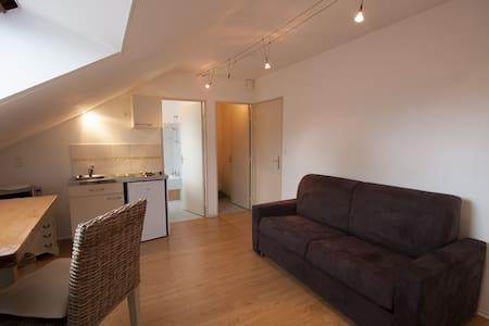 Studio entrée de Dinard - Parking - Apartment
