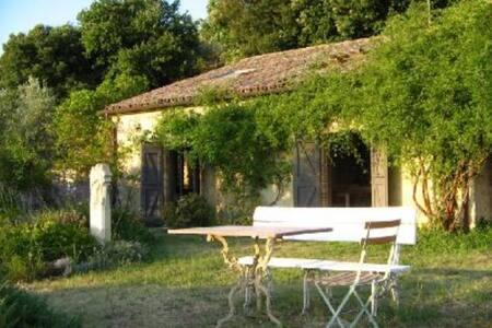 La casa di Orietta - Civitella del Lago - House
