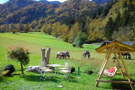 Apartment in the shadow of roses - Bohinjska Bela
