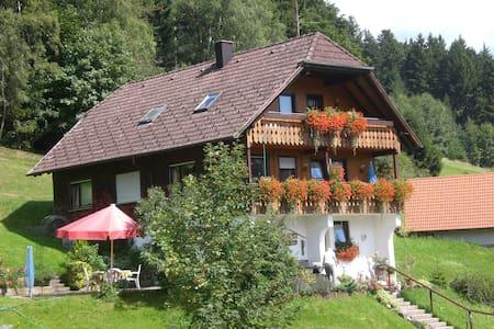 Wandern und Genuss am Nationalpark Schwarzwald - Baiersbronn - Appartement