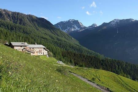 Baita Civico 7 in Valle Maira  - Blockhütte
