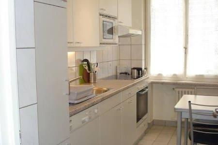 Spacious Champel Appartment - Apartamento