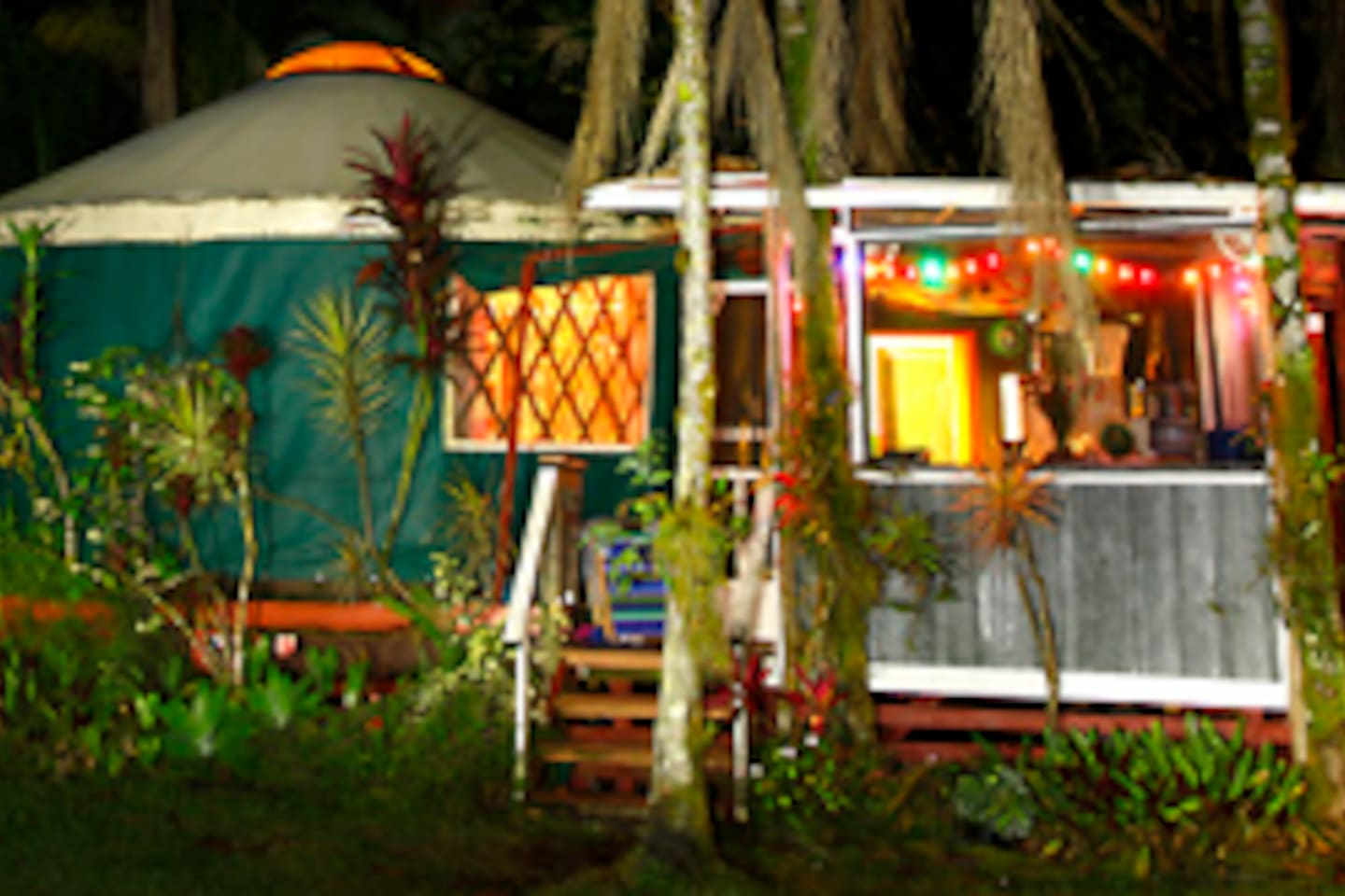 Eucalyptus Yurt at night