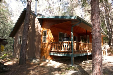 Shanks' Cabin in the Woods