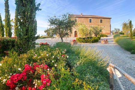 Villa Montepulciano - 111623 - Montepulciano - Villa