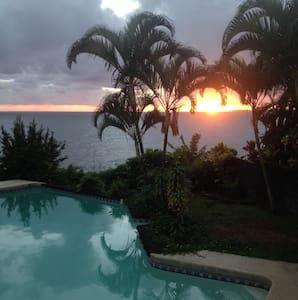 Cliffside pool for Whale season - Hilo