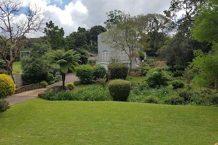 Terrace suite - Overlooking a magnificent garden - Villa