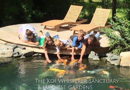 Koi Whisperer Sanctuary & Japanese Gardens - Koko kerros