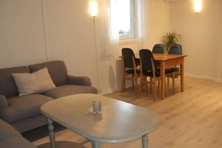 Newly redecorated 2-room apartment - Hamar - Pis