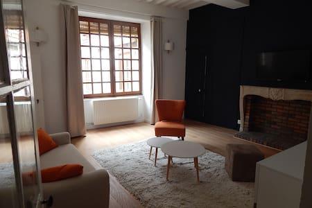 65 m2 au coeur du centre historique - Dole - Apartment