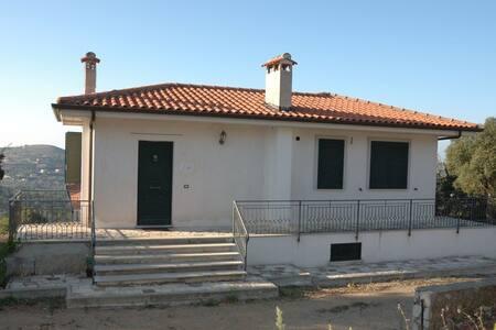 Apartment L'Albero Maestro in villa