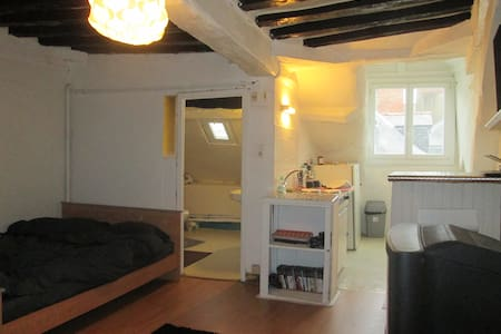 Spacious Studio in the Historical Center of Rennes - Appartement