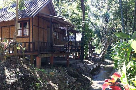 Bamboo stream view - Cabin