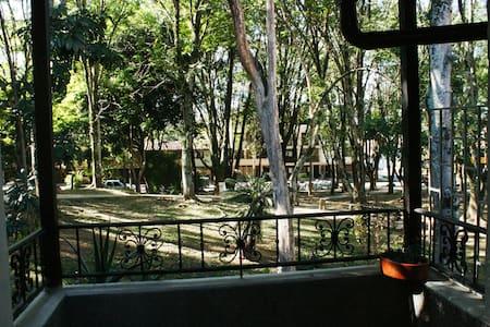 La Casa Verde - Dom
