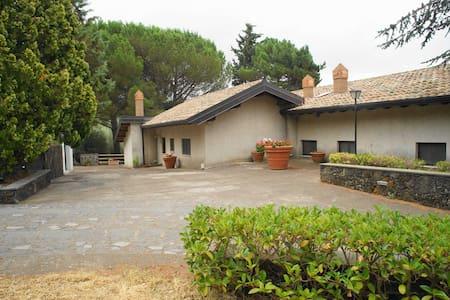 Etna Paradise 2 Casa Vacanze - House