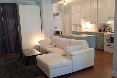 Large cozy appartment, close to downtown, parking - Wohnung