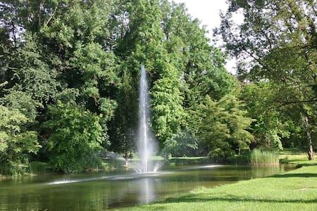Wohnen im Grünen in Bad Bellingen beim Kurpark - Lejlighed