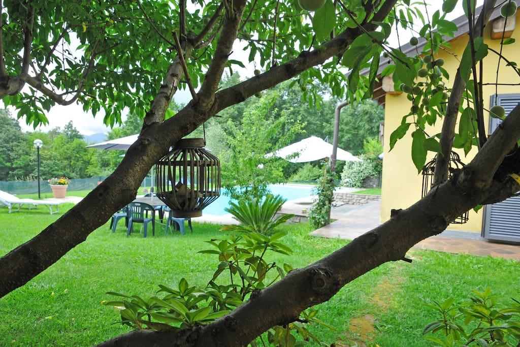 Villa Alba with Pool and Garden
