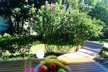 Moderne Ferienwohnung mit Garten & Herzlichkeit
