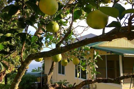 Waipiʻo Hostel - ʻAina Room - Honokaa - Haus