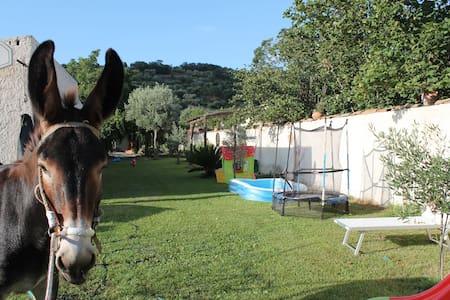 Quiet apartament close to Taormina - Lacco