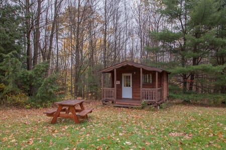Log Cabin 2 w/access to 20 miles hiking trails - Freeville - Kisház