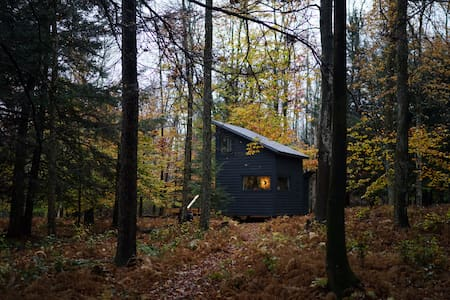 Black Swan Lake House on 12 acres Catskill Modern - Cottage