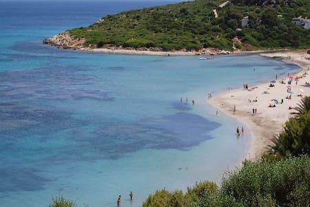 Villetta in riva al mare. - Maladroxia - House