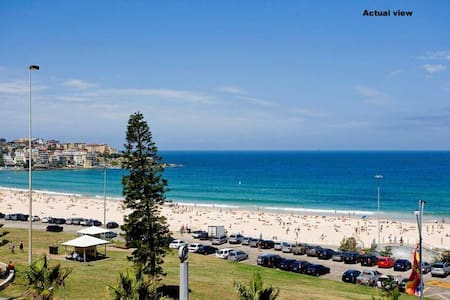 bondi mature singles Reviews on bars to meet older women in sydney new south wales - bristol arms retro hotel, ivy, the wine library, the soda factory, orient hotel.