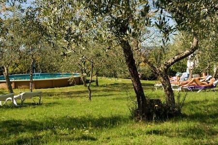 Mansarda with a romantic terrace - Greve in Chianti - Loteng