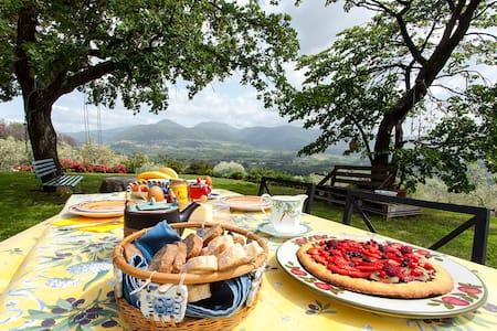 Relax in Sabina - the home on hill close to Rome - Poggio Nativo - Bed & Breakfast