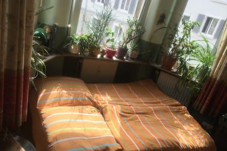 Erker-Room - Apartment