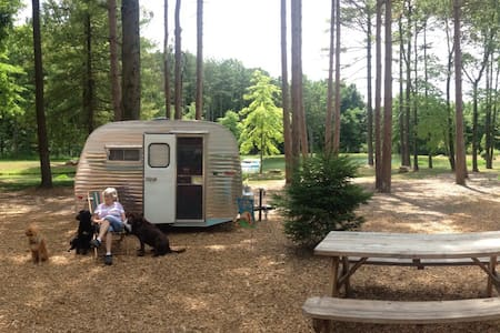 Glamping in Vintage  1968 Scotty! - Szoba reggelivel