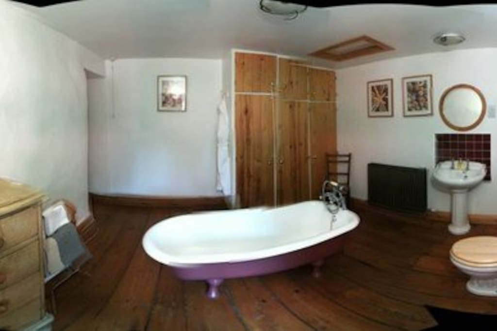 Panoramic picture of bathroom (slightly mishapen)