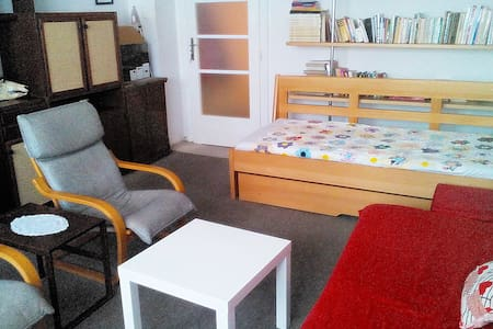 Comfortable Room in Central Brno - Apartment