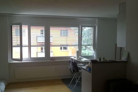 1-Zimmerwohnung befristet, Kreuzlingen am Bodensee - Appartement