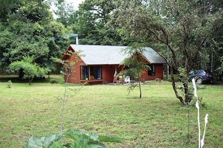 Renting house in the forest , City Villarrica - Villarrica - Cabaña en la naturaleza