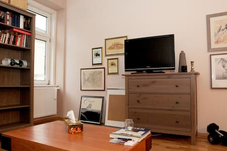 Cosy, new renovated Apartment - Vienne - Appartement