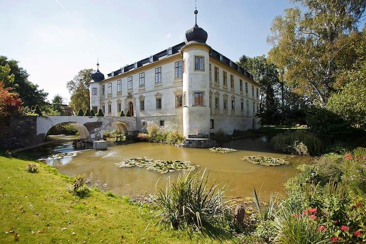 Chateau Třebešice - Castle
