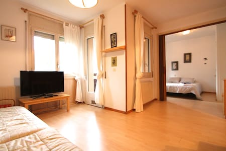 Spacious apartment, center Massana - La Massana