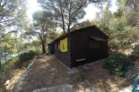 Captain's cabin - Island Mrcara - Bungalow