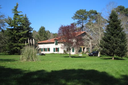 Rare forest house, untouched nature, swimming lake - Sos - Haus